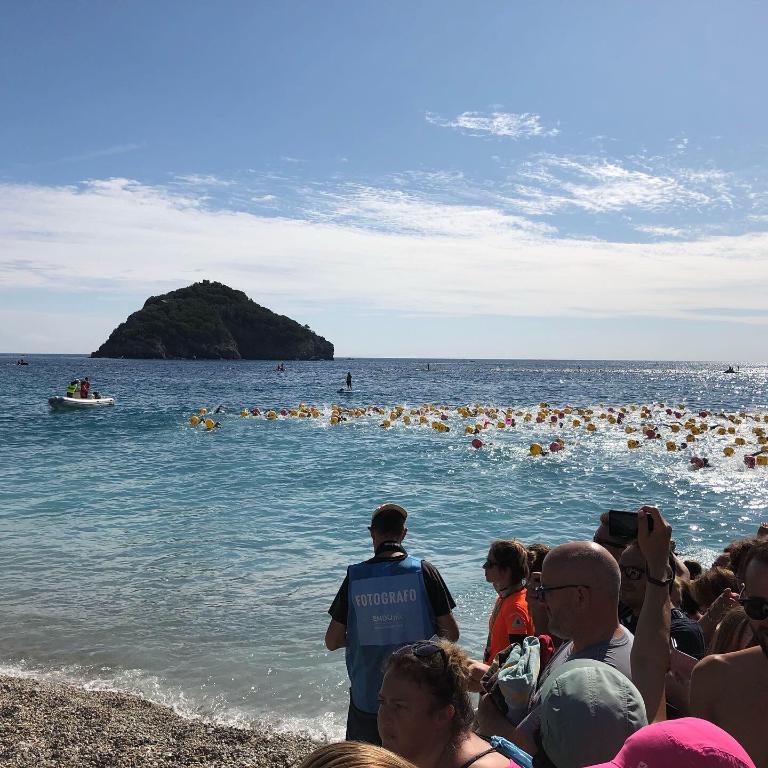 Swim-the-Island-2019
